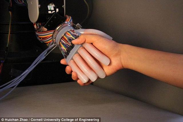 灵敏的假肢 柔软机械手臂装配光学传感器具有人类触觉插图